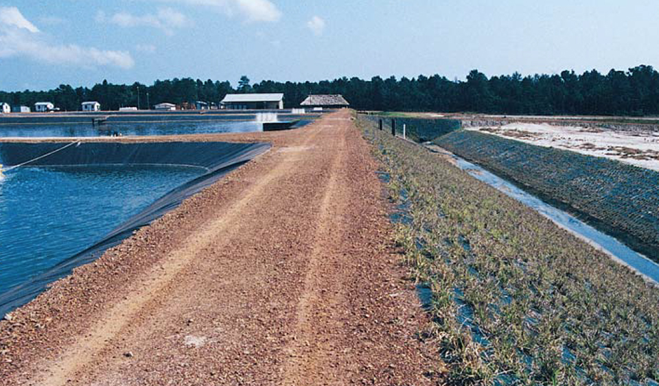 Changing paradigms in shrimp farming