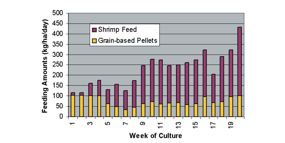 Changing paradigms in shrimp farming