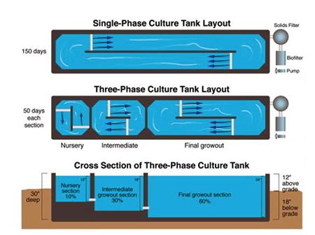 three-phase recirculating