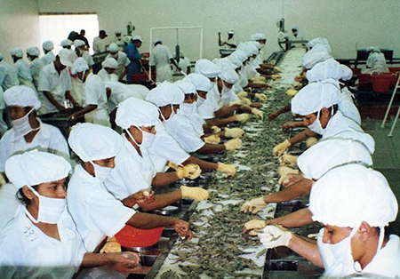 shrimp-cooking facility