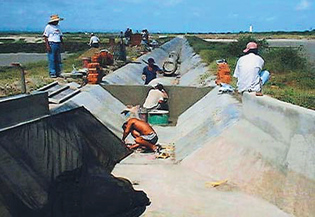 Article image for Pond-condition improvements used to manage WSSV in Peru