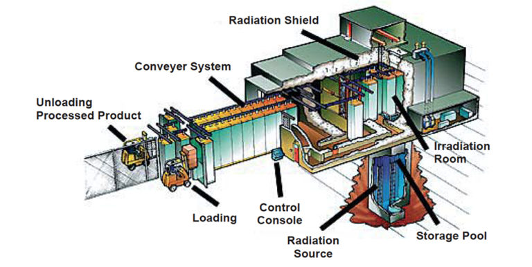 Article image for Irradiation: Expanding seafood's safety arsenal