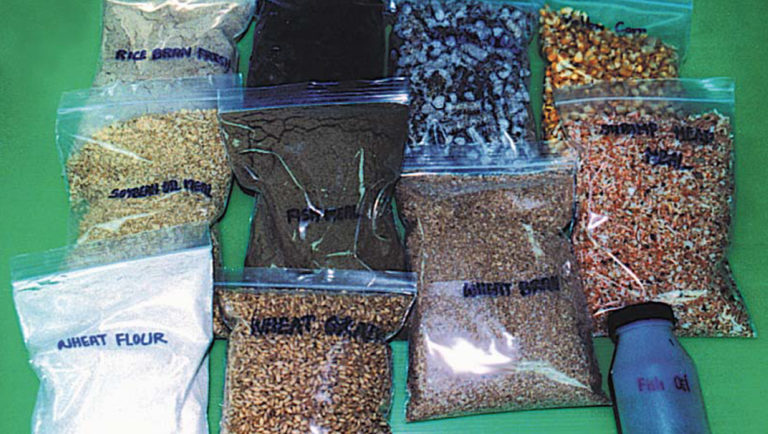 Article image for Aquatic feed manufacturing, part 1