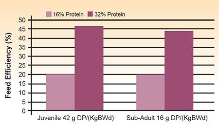 protein management