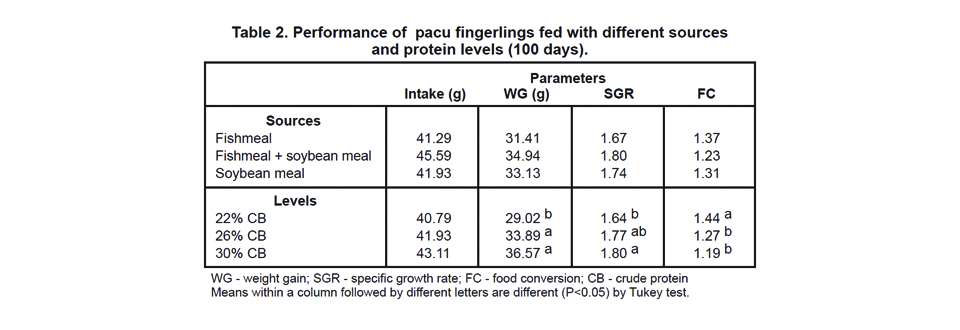 Protein for pacu