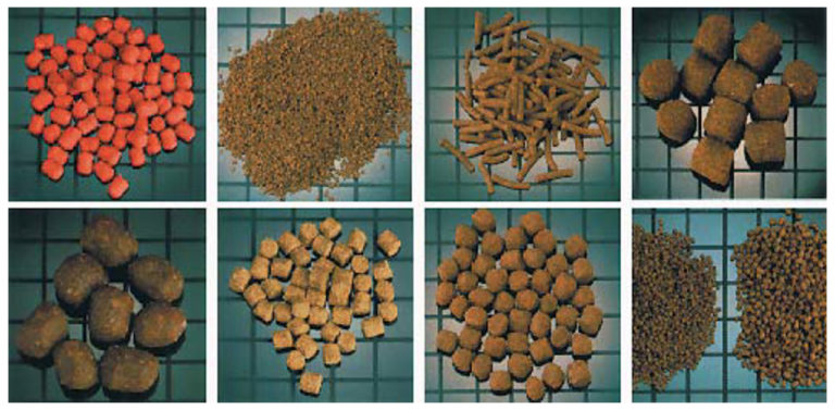Article image for Extrusion production of aquatic feeds