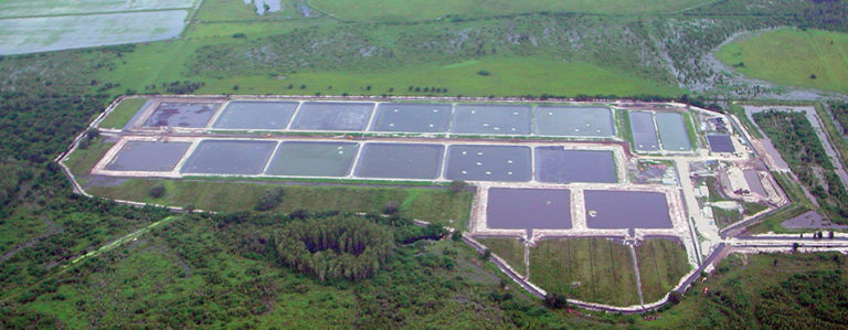 Article image for First commercial inland farm in Florida uses zero discharge in low-salinity