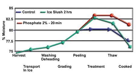 Phosphates and shrimp