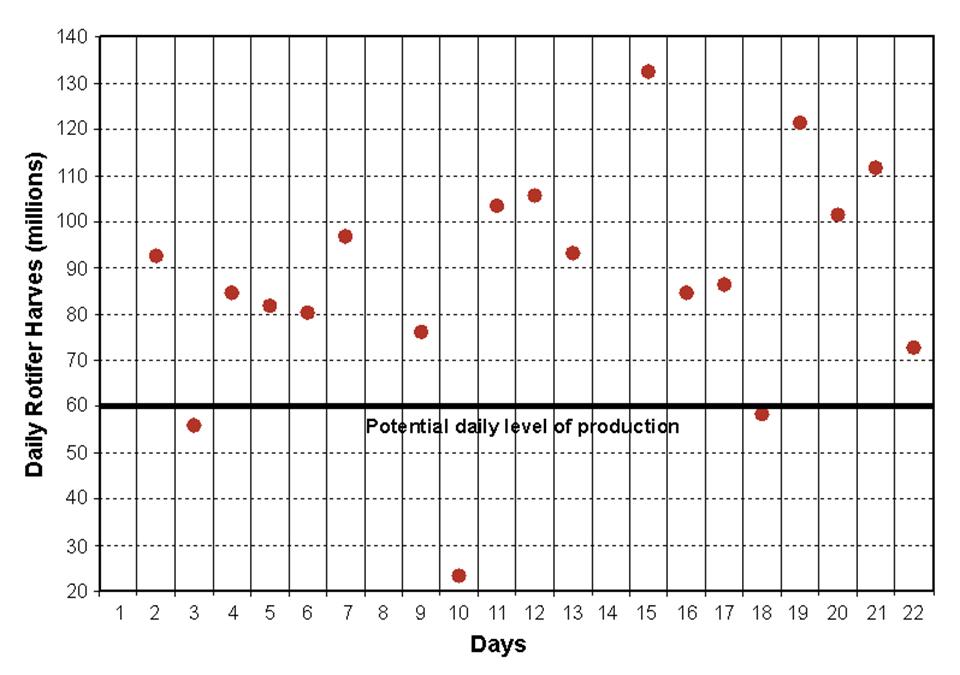 rotifer nutrition