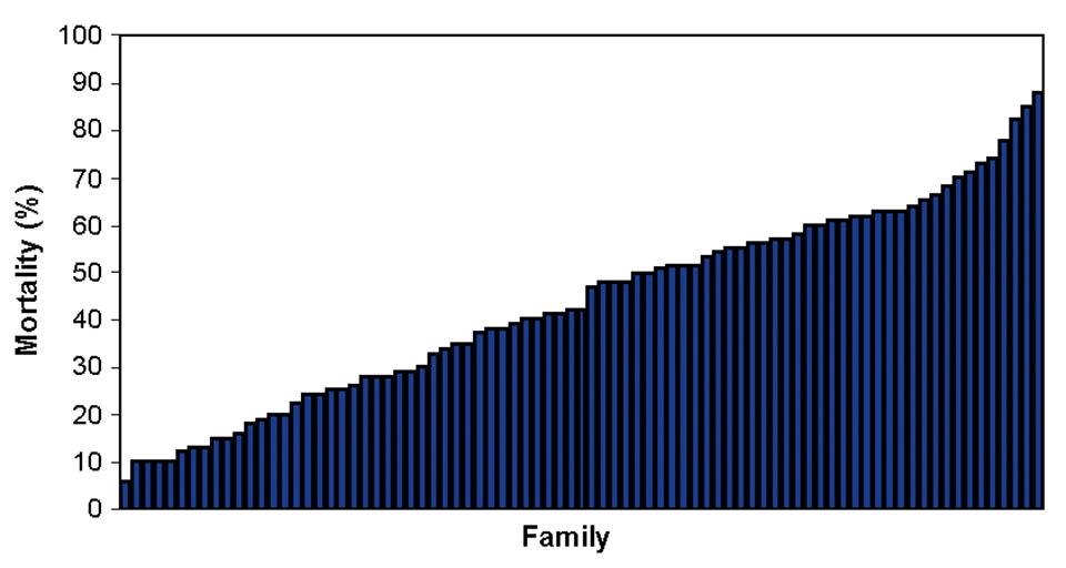 genetic detection