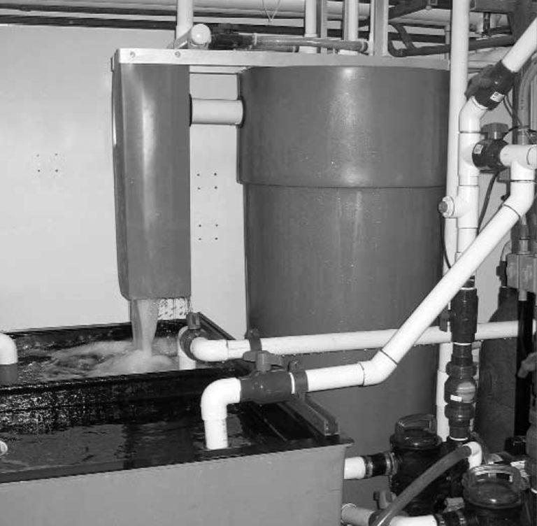 Article image for No-maintenance filtration for hatcheries