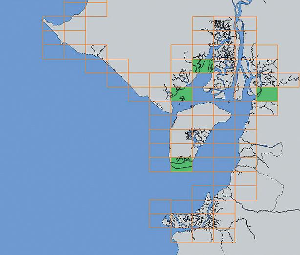 Article image for Ecuador develops GIS-assisted alert system for shrimp farming