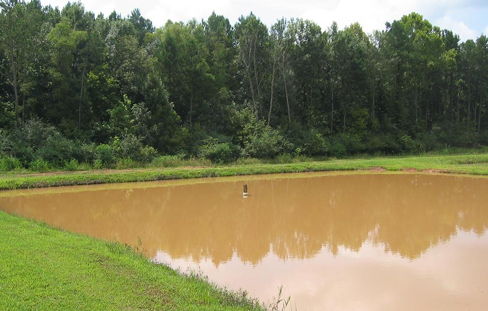 muddy ponds