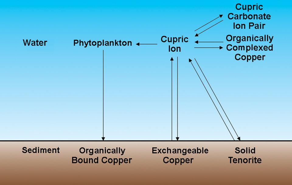 Copper treatments