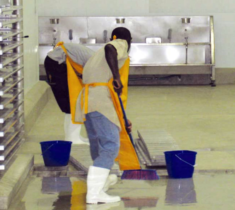 Article image for Beyond HACCP: Total procedures manuals, Part 2