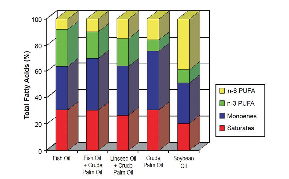 fatty acid composition