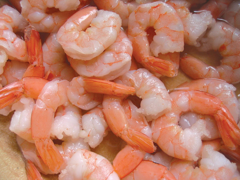 Article image for Controlled cooking methods offer higher shrimp yields with product safety