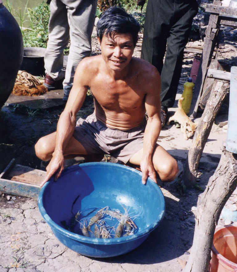 Article image for Freshwater prawn seed production, culture expand in Vietnam