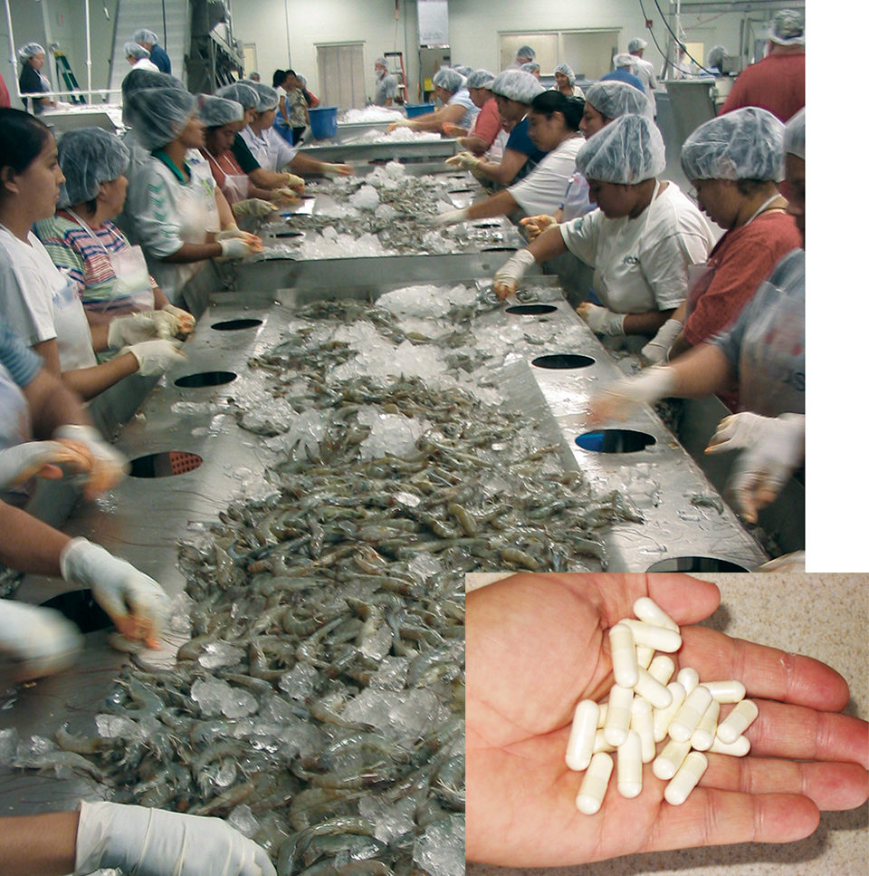 Shrimp processing byproducts