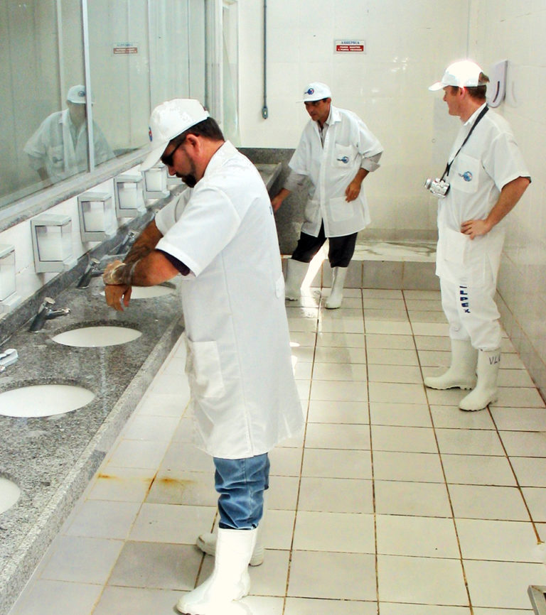 Article image for Sanitation education: Good hygiene must often be taught at processing plants