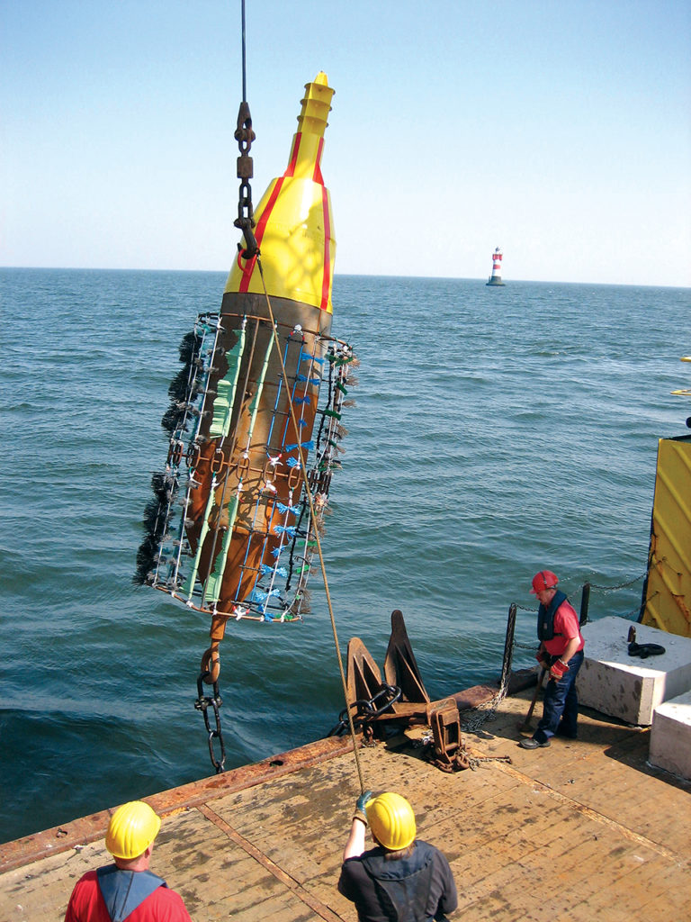 Article image for Concept combines offshore wind farms, mussel cultivation