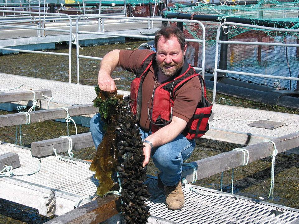 integrated multitrophic aquaculture