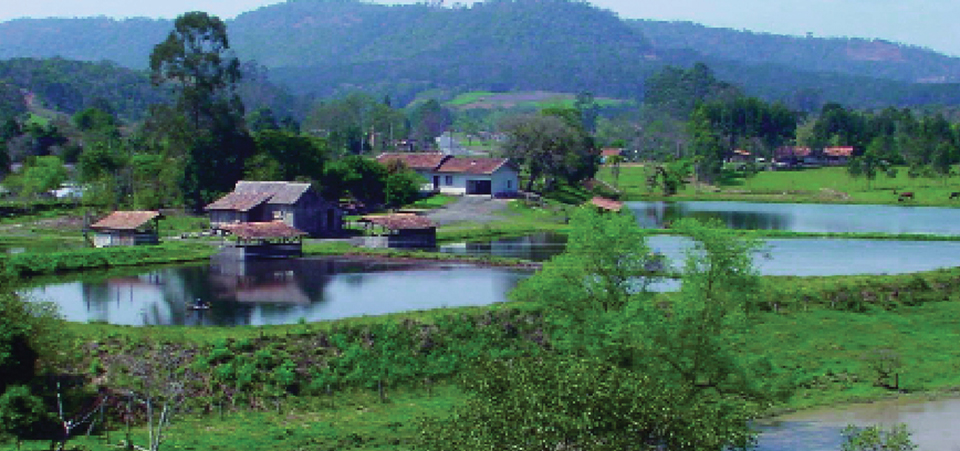 Article image for Brazil's inland aquaculture