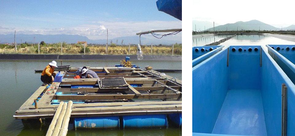 Floating raceways