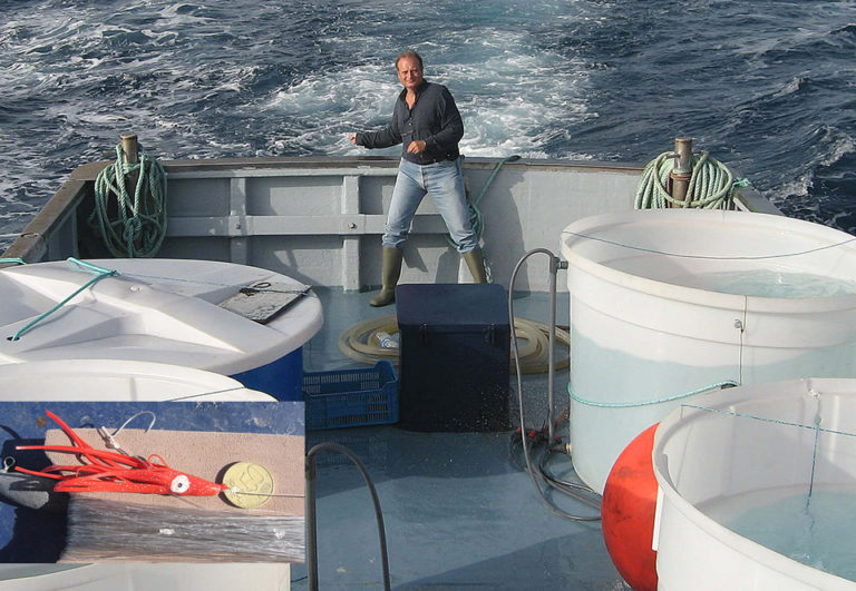 Article image for Spanish trials address transport of wild juvenile tuna for ongoing study