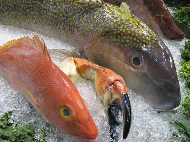 Article image for Enzymes in seafood, part 1
