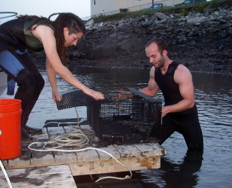Article image for Rearing diets for winter flounder optimize weaning success in hatchery, wild
