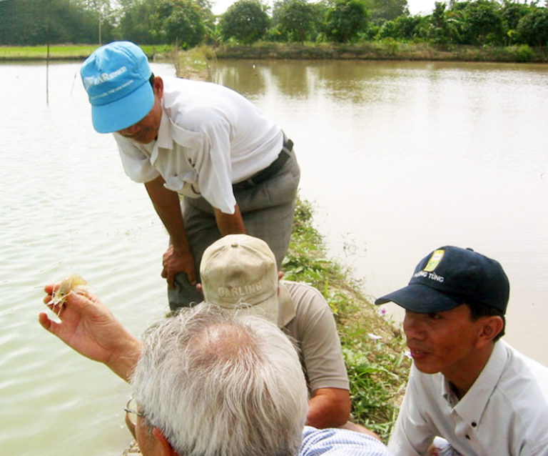 Article image for Assessment of outreach to prawn farmers in Thailand