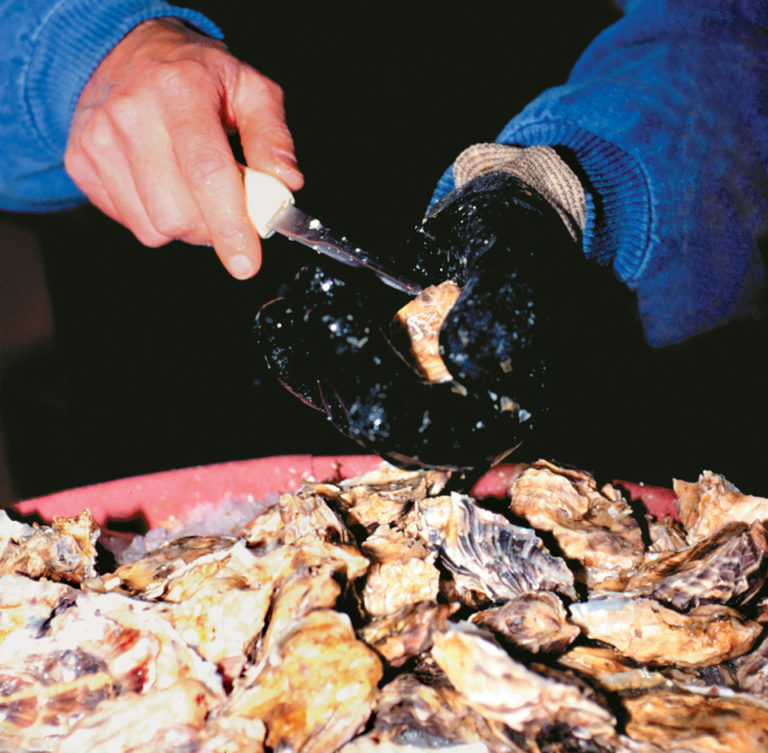 Article image for Vibrio contamination in raw oysters controlled by post-harvest treatments