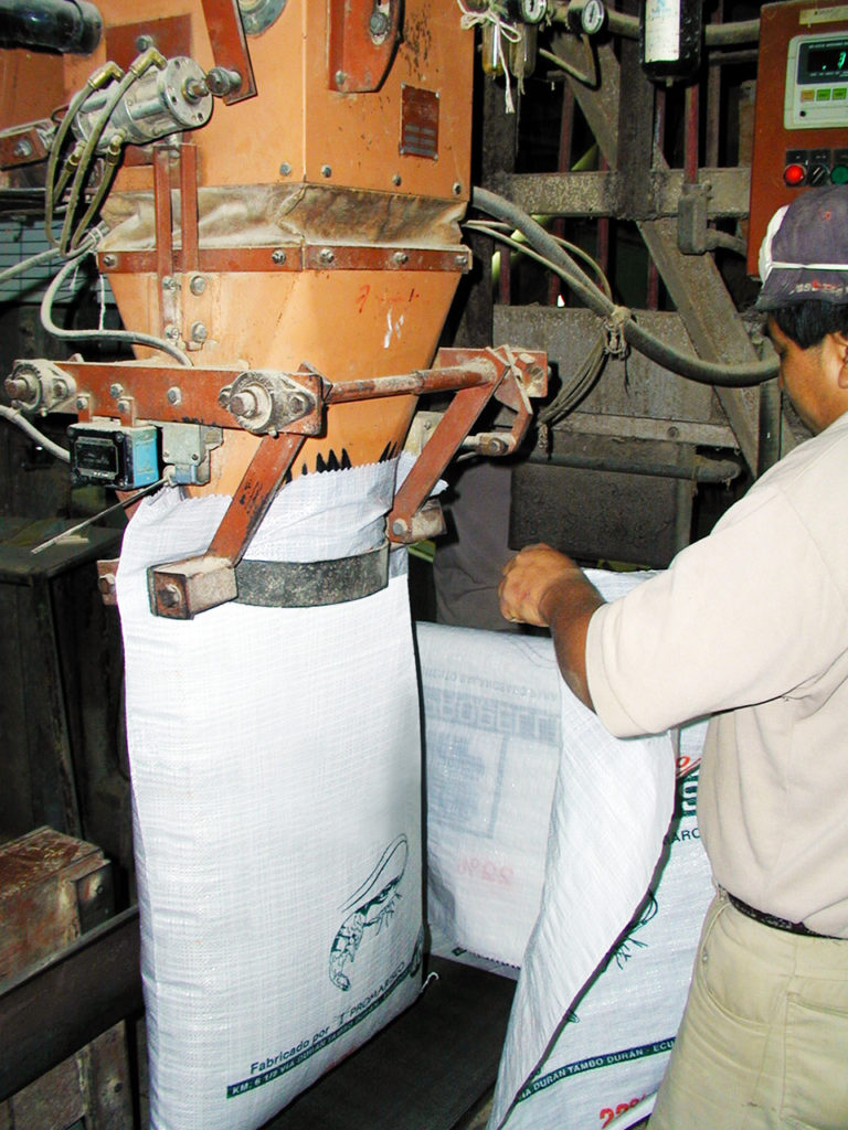 Article image for Mycotoxins in feed affect fish health, performance