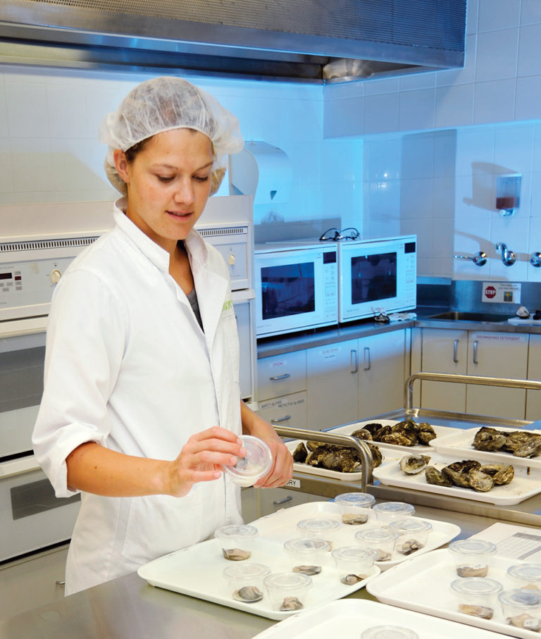 Article image for Pacific oysters, abalone undergo sensory evaluation