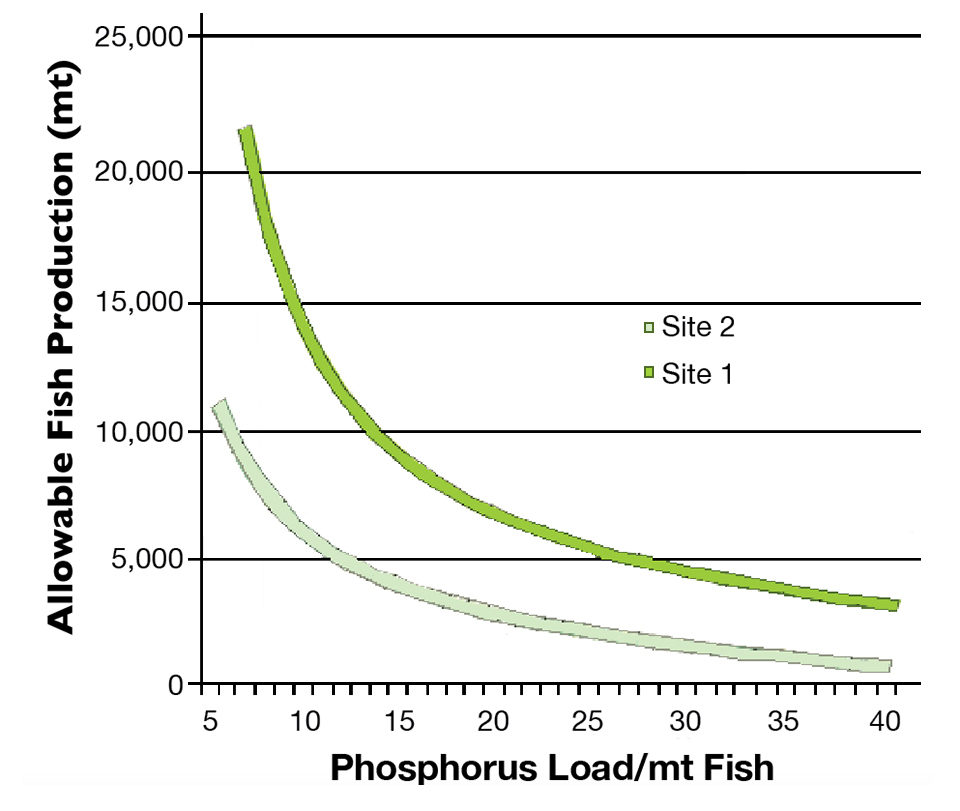 phosphorus loads