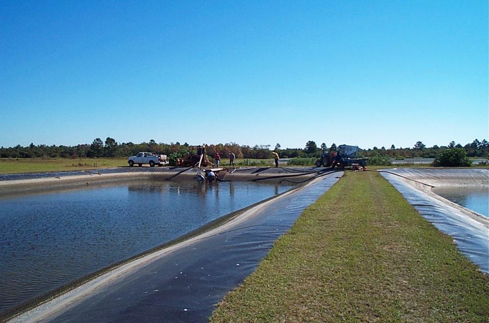 pond testing