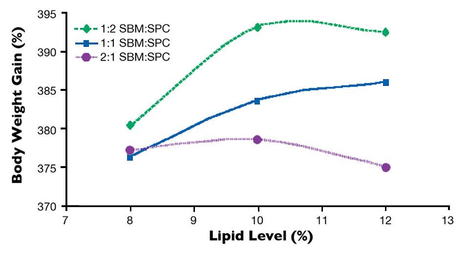 lipid levels