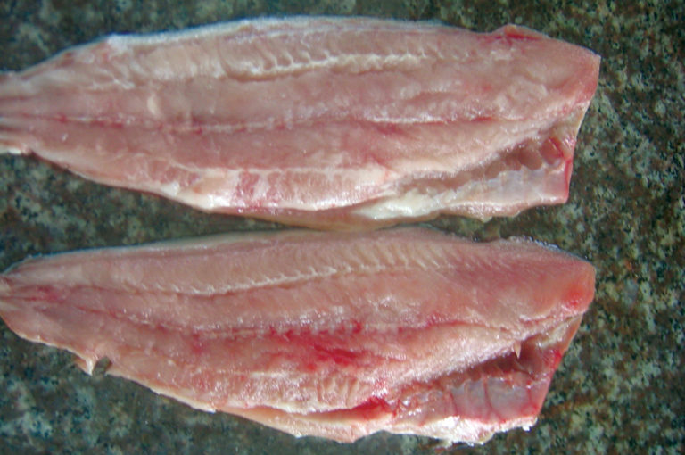 Article image for Sensory analysis evaluates pangasius fillet quality