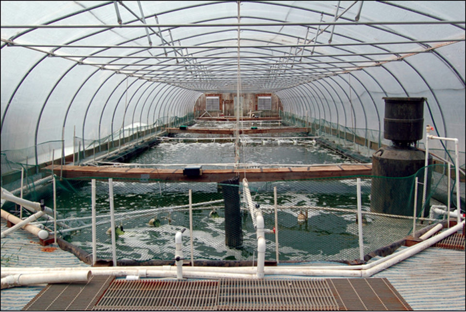 Waddell Mariculture Center