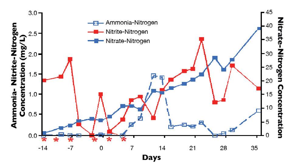 ammonia-nitrogen