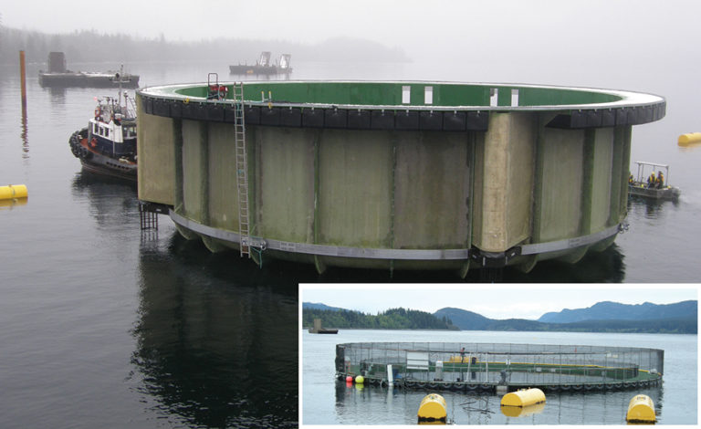 Article image for Floating closed-containment aquaculture