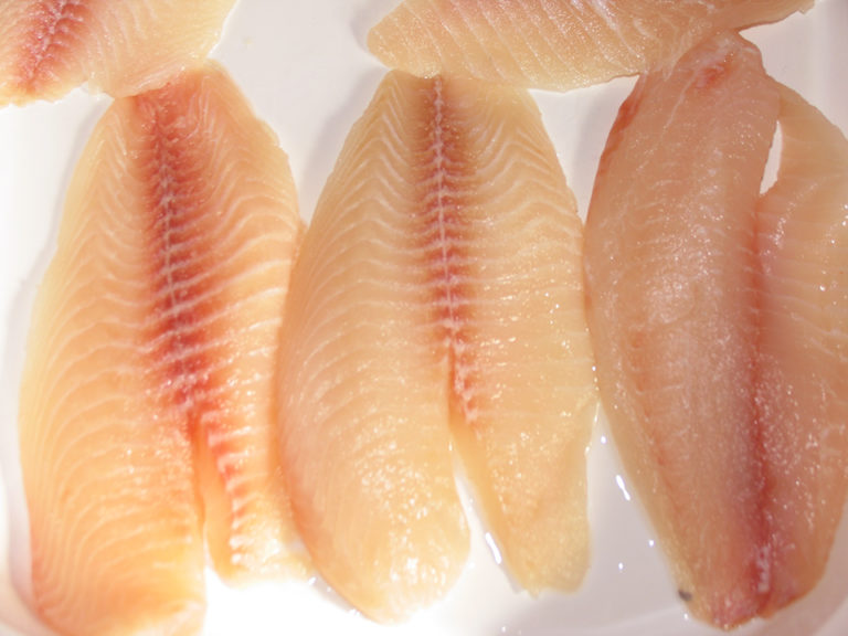 Article image for Moisture-retention treatments connected to odors in tilapia fillets