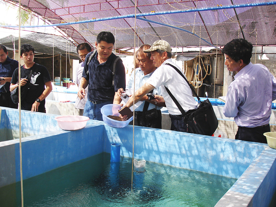Article image for ASAIM addresses challenges to growth of marine fish farming in Southeast Asia