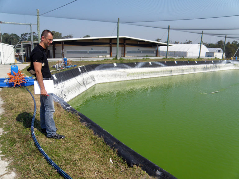 Article image for Cooperation grows Australian aquaculture