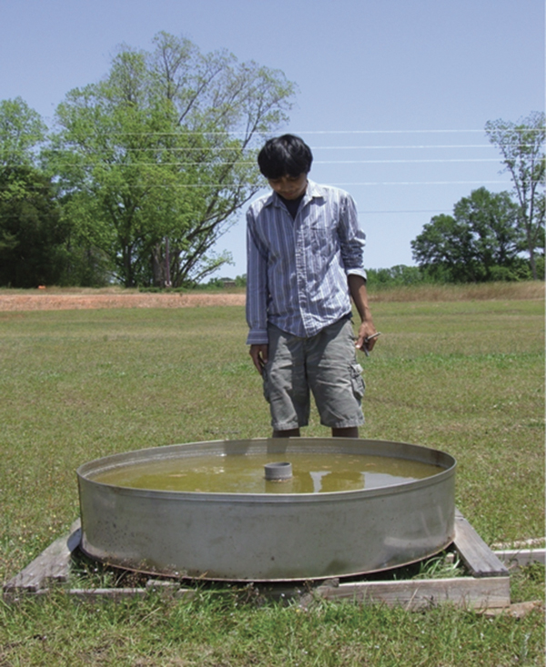 Article image for Evaporation affected by sunlight, temperature, wind