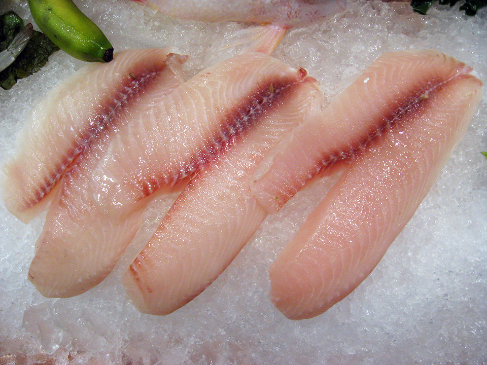 Article image for North American markets for fresh tilapia, part 1