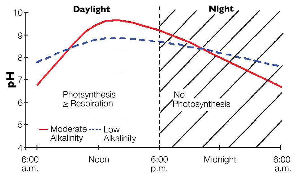 pH cycles