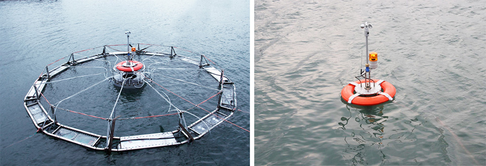 Article image for Automatic submersible fish cage systems counter weather, surface problems