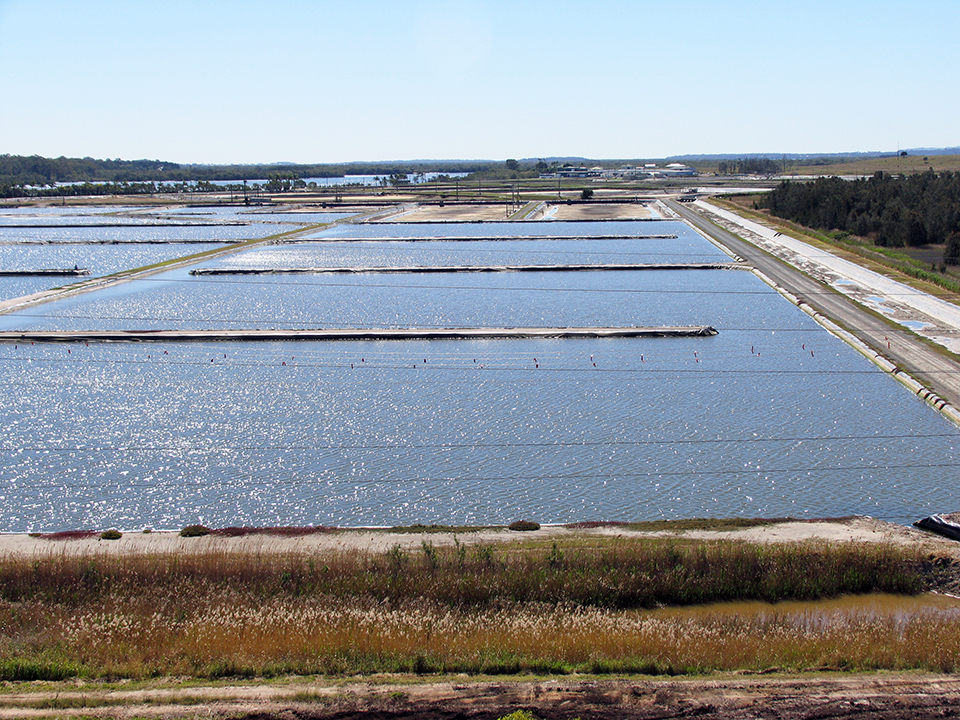 Article image for Change the paradigm and break aquaculture stereotypes